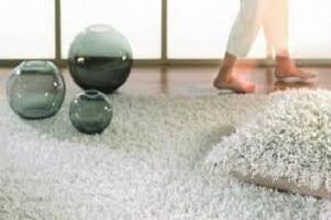 Carpet Odour Removal Moorooka