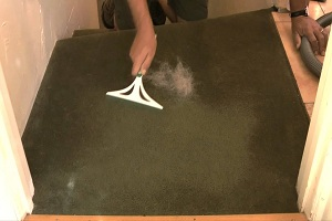 Carpet Pet Hair Removal Moorooka