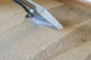 Stainguard Carpet Protection Moorooka